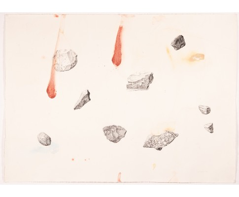 Untitled (Arrangement of Collected Geological Samples)