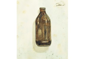 Untitled Study (Beer Bottle)